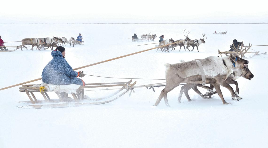 Охота на снегоходы