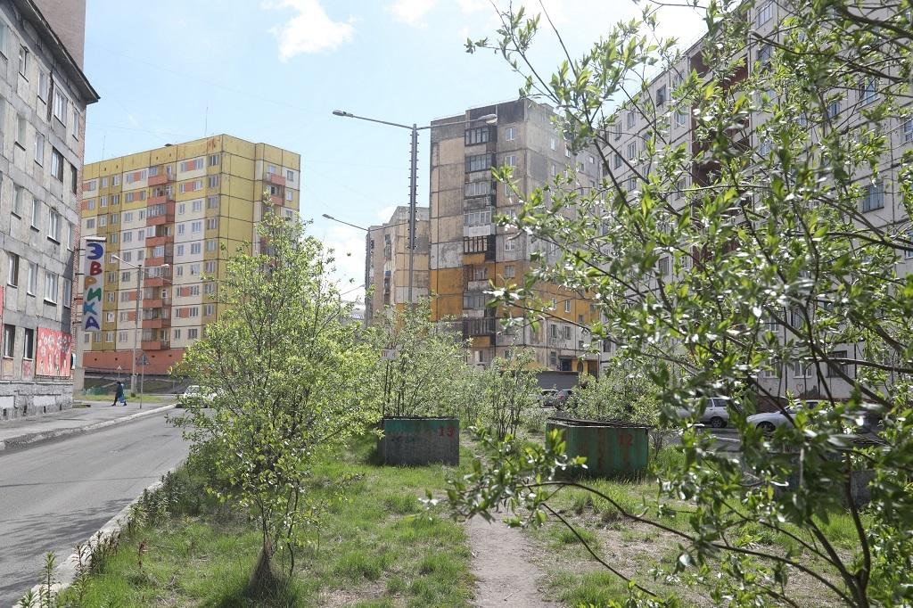 Мероприятия в области охраны окружающей среды в Норильске выделили в отдельную муниципальную программу