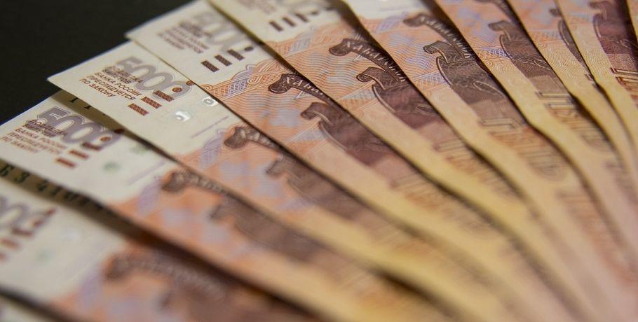Субсидию для малого и среднего бизнеса из федерального бюджета получили 18 тысяч налогоплательщиков