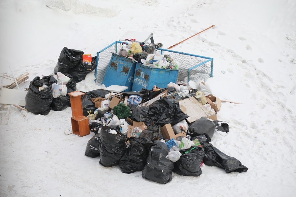Правительство утвердило «дорожную карту» по введению раздельного сбора твёрдых коммунальных отходов