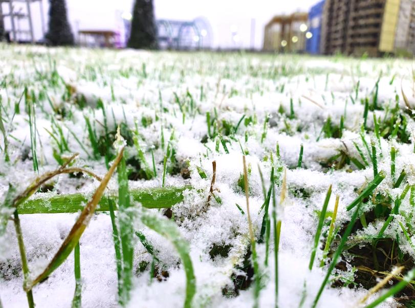С первым снегом, Норильск!