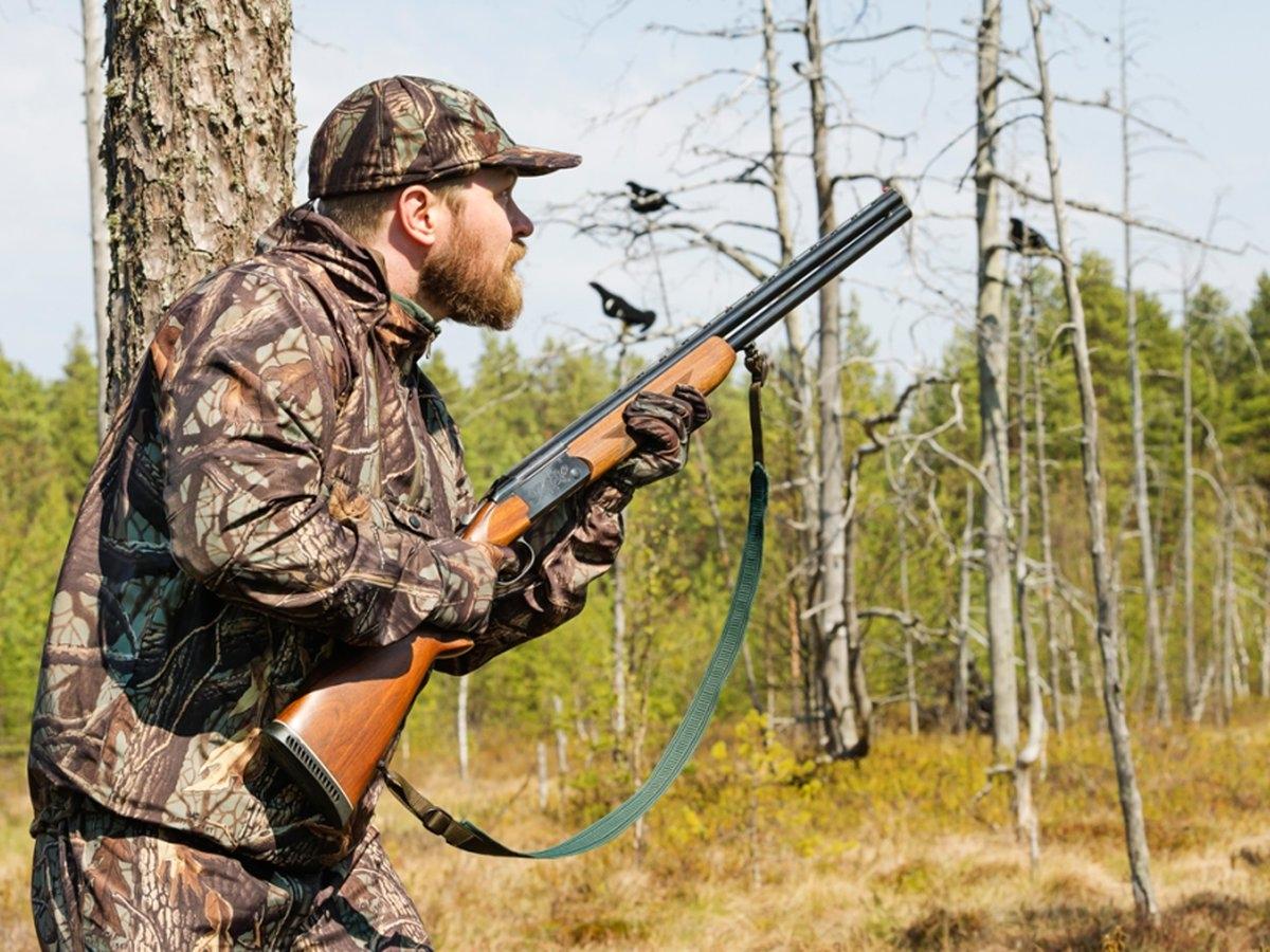 Составлен лимит охотничьих ресурсов