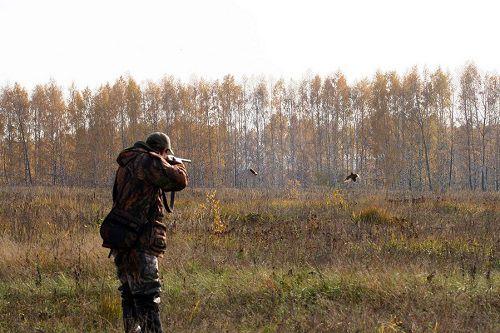 Норильская организация охотников и рыболовов заплатит штраф за нарушение правил пользования объектами животного мира.