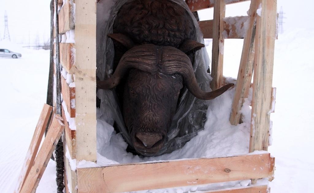 Будущим летом в городе установят бронзовую скульптуру овцебыка