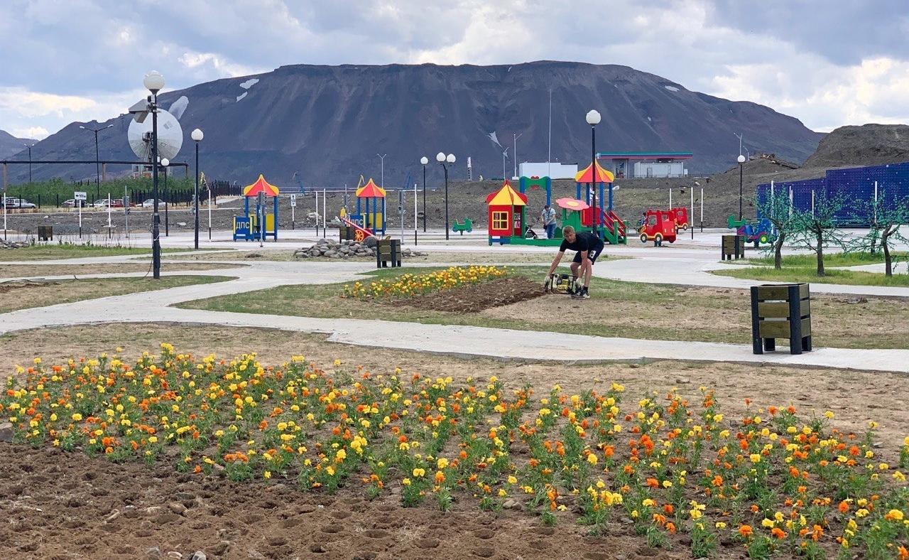 В парке отдыха «Озеро Долгое» высаживают бархатцы