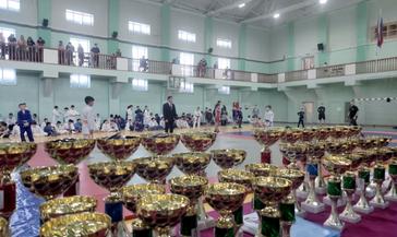 В Норильске прошёл XV Заполярный фестиваль спортивной борьбы