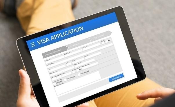 С 1 января 2021 года иностранные граждане могут въезжать на территорию России по единой электронной визе